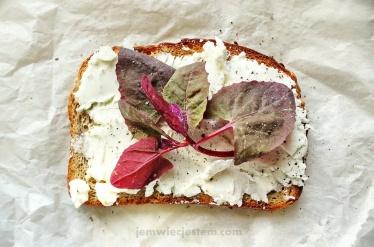 Tost z kozim serem, szpinakiem i wędzoną solą