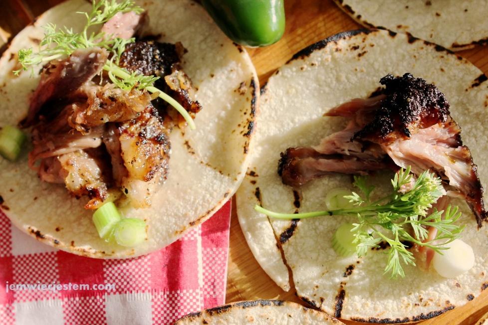 05 30 14 carnitas tacos (31) JWJ