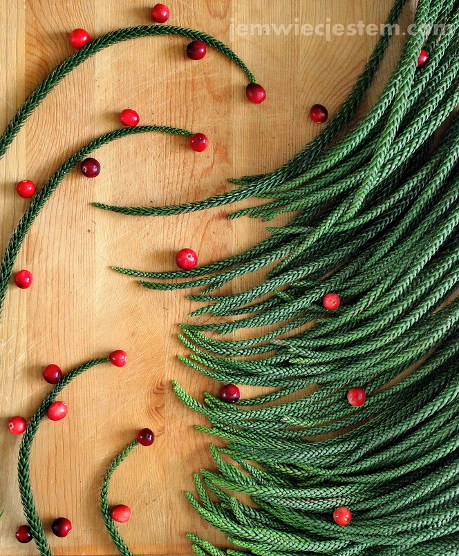 12 21 14 christmas tree (3) JWJ