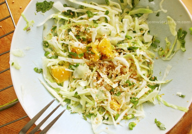 01 30 15 asian cabbage slaw and pork (6) JWJ