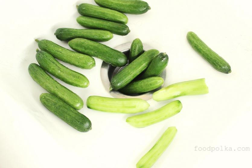 04 15 14 persian cucumbers (2)FP