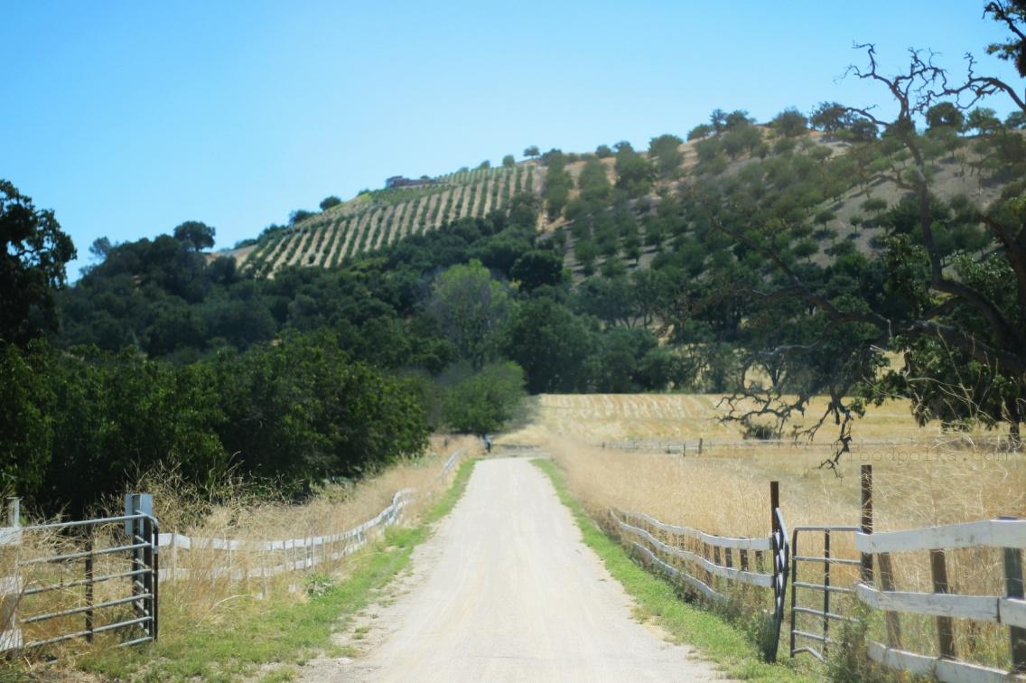 Kalifornijska wieś wita was
